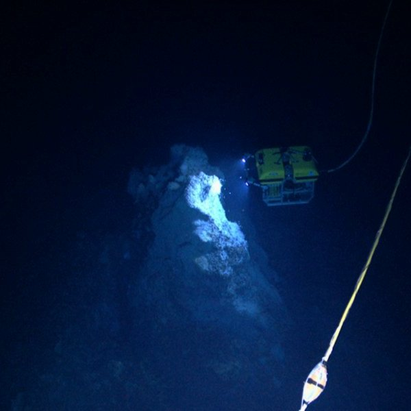 Океан, геология, климат, вода, биология, природа, животные, фауна, эволюция, На дне моря учёные открыли новый тип гидротермальных источников