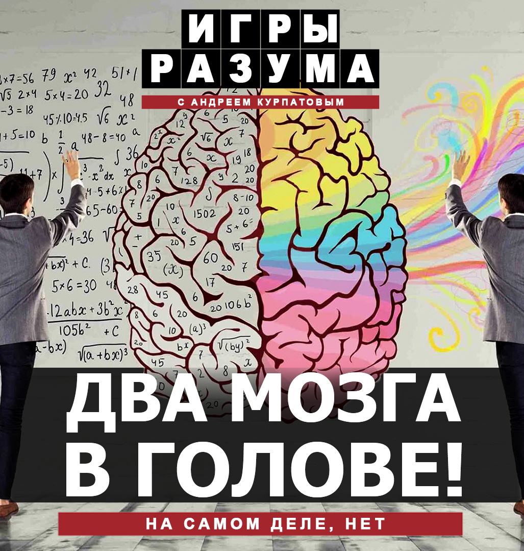 мозг, наука, человек, Расщеплённый мозг - это нормально. Андрей Курпатов на QWERTY